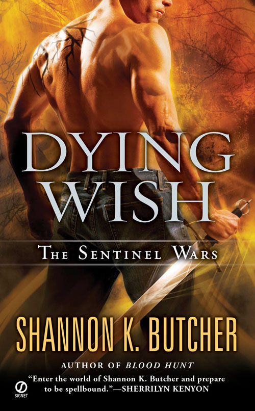 DYING WISH cover